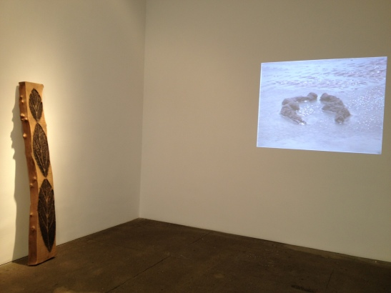 Ana Mendieta: Late Works 1981-85, installation view at Galerie Lelong, NY. Image courtesy of Erin Dziedzic