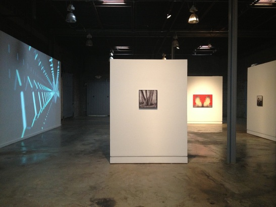 Barry Anderson, The Janus Restraint THE ASCENSION, The Studios Inc., Kansas City, MO, installation view. Image courtesy of Erin Dziedzic