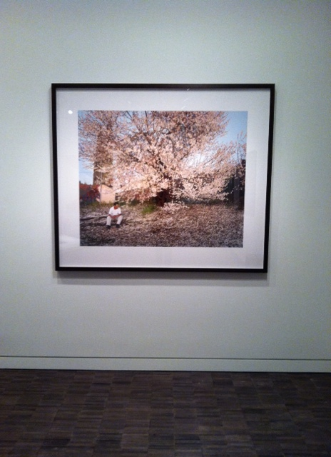 Larry Sultan, Antioch Creek, 2008, Chromogenic print. Image by Monica Shinn