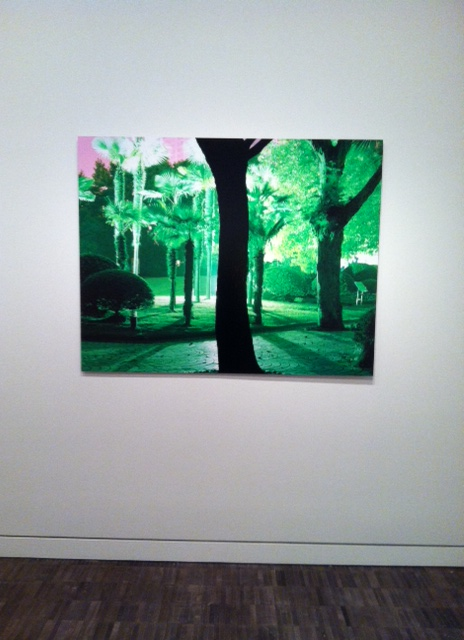 Lisa K. Blatt, People's Park, Shanghai, China, 2007, photo on aluminum. Image by Monica Shinn