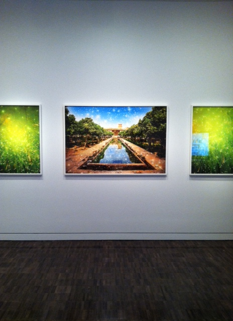Ala Ebtekar, Paradise, 2011, archival pigment print on canvas. Image by Monica Shinn