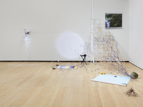 Sarah Sze, Random Walk Drawing (Water), 2011 Mixed media, Courtesy of the artist and Tanya Bonakdar Gallery, New York. Photo courtesy of Tom Powel.